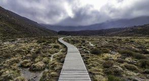 Το vulcano πεζοπορώ ημέρας Tongariro αναρριχείται Στοκ φωτογραφία με δικαίωμα ελεύθερης χρήσης