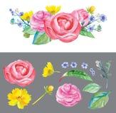 Το Watercolor ανθίζει peonies και τριαντάφυλλα διανυσματική απεικόνιση