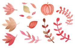 Το Watercolor βγάζουν φύλλα και το καθορισμένο διάνυσμα κολοκύθας στοκ φωτογραφίες
