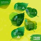 Το Watercolour αφήνει infographic Στοκ φωτογραφία με δικαίωμα ελεύθερης χρήσης