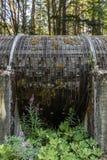 Το Wildflowers αυξάνεται γύρω από τον ξύλινο σωλήνα σανίδων στις πτώσεις Toketee Στοκ Φωτογραφία