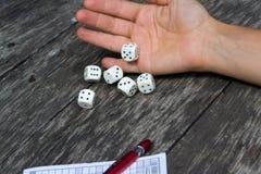 Το Yahtzee, χωρίζει σε τετράγωνα το παιχνίδι Στοκ φωτογραφία με δικαίωμα ελεύθερης χρήσης