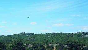 Το ziplayner κάνει πατινάζ πέρα από την ορεινή έκταση απόθεμα βίντεο