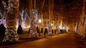Το Zrinjevac με τα Χριστούγεννα ανάβει τη νύχτα φιλμ μικρού μήκους