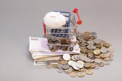 Τράπεζα και callculator Piggy στον τεμαχισμό του κάρρου με τα τραπεζογραμμάτια και τα νομίσματα Στοκ Εικόνες
