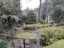 Τράπεζα στη μέση της φύσης του κήπου στοκ φωτογραφίες με δικαίωμα ελεύθερης χρήσης