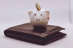 Τράπεζα Piggy, αποταμίευση, νόμισμα νόμισμα Ένας μικρός χοίρος Στοκ Φωτογραφίες