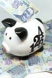 Τράπεζα Piggy και ρουμανική αποταμίευση lei νομίσματος ron για την έννοια συνταξιοδοτικής αποχώρησης Στοκ Φωτογραφία