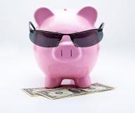 Τράπεζα Piggy με τα γυαλιά ηλίου στα ΑΜΕΡΙΚΑΝΙΚΑ δολάρια Στοκ φωτογραφία με δικαίωμα ελεύθερης χρήσης