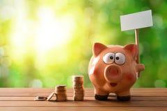 Τράπεζα Piggy με τον κενό πίνακα διαφημίσεων στο υπόβαθρο πινάκων και φύσης Στοκ φωτογραφίες με δικαίωμα ελεύθερης χρήσης