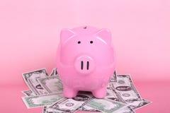Τράπεζα Piggy στο μαλακό ρόδινο υπόβαθρο με τα τραπεζογραμμάτια Δολ ΗΠΑ Στοκ Εικόνα