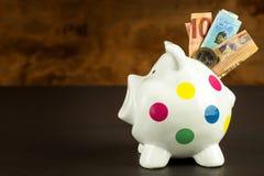 Τράπεζα Piggy Χρήμα-κιβώτιο με τα έγκυρα ευρο- τραπεζογραμμάτια Αποταμίευση στην υποθήκη Τομέας της τράπεζας Στοκ Εικόνες