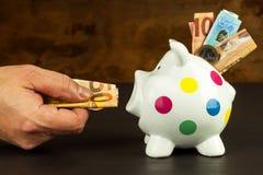 Τράπεζα Piggy Χρήμα-κιβώτιο με τα έγκυρα ευρο- τραπεζογραμμάτια Αποταμίευση στην υποθήκη Τομέας της τράπεζας Στοκ Φωτογραφία