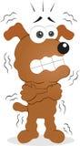 Τρέμοντας σκυλί Στοκ φωτογραφία με δικαίωμα ελεύθερης χρήσης