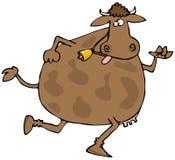 τρέξιμο αγελάδων Στοκ φωτογραφίες με δικαίωμα ελεύθερης χρήσης