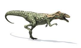 Τρέξιμο δεινοσαύρων Masiakasaurus απεικόνιση αποθεμάτων
