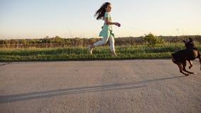 Τρέξιμο και παιχνίδι με τα σκυλιά φιλμ μικρού μήκους