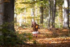 Τρέξιμο με τη teddy αρκούδα στοκ εικόνα με δικαίωμα ελεύθερης χρήσης