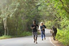 Τρέξιμο με τον ταύρο πάλης Στοκ Εικόνες