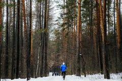 Τρέξιμο δρομέων αθλητών Στοκ εικόνα με δικαίωμα ελεύθερης χρήσης