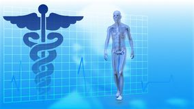 Τρέξιμο σκελετών που περπατά ενάντια στο σημάδι γιατρών στο υπόβαθρο διανυσματική απεικόνιση