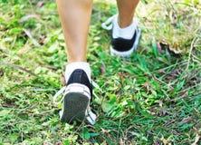 Τρέξιμο στη φύση Στοκ Φωτογραφία
