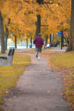 τρέξιμο φθινοπώρου Στοκ Φωτογραφία