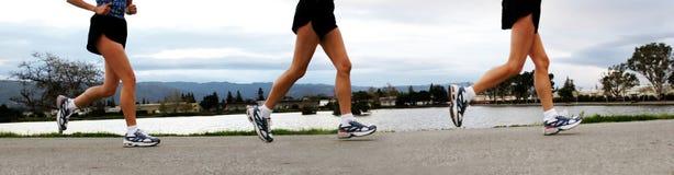 τρέχοντας γυναίκες Στοκ εικόνες με δικαίωμα ελεύθερης χρήσης