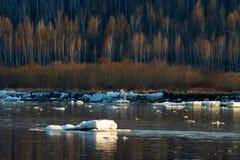 Τρέχοντας επιπλέων πάγος πάγου επιπλέοντος πάγου πάγου Στοκ φωτογραφία με δικαίωμα ελεύθερης χρήσης