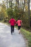 τρέχοντας νεολαίες ζευ Στοκ Εικόνες