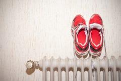 τρέχοντας παπούτσια Στοκ φωτογραφίες με δικαίωμα ελεύθερης χρήσης
