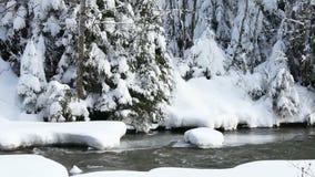Τρέχοντας ποταμός το χειμώνα απόθεμα βίντεο