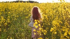 Τρέχοντας σταυρός κοριτσιών ο τομέας στο ηλιοβασίλεμα κίνηση αργή φιλμ μικρού μήκους