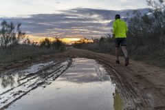 Τρέχοντας στον τομέα στο ηλιοβασίλεμα στα σορτς, με τα πάνινα παπούτσια στοκ εικόνες με δικαίωμα ελεύθερης χρήσης