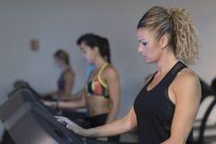 Τρέχοντας treadmill κατάρτισης ομάδας ανθρώπων στη γυμναστική στοκ φωτογραφία με δικαίωμα ελεύθερης χρήσης