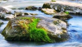 Τρέχων ποταμός άνοιξη στοκ εικόνες