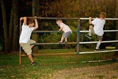 Τρία αγόρια στην πύλη στοκ εικόνες