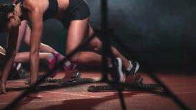 Τρία αθλητικά κορίτσια στα μαύρα ενδύματα του αθλητή τη νύχτα treadmill θα αρχίσουν για τον αγώνα στην ορμή απόθεμα βίντεο