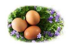 Τρία αυγά Πάσχας σε μια διαμορφωμένη αυγό φωλιά του isola λουλουδιών bluebell Στοκ φωτογραφίες με δικαίωμα ελεύθερης χρήσης