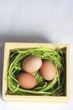 Τρία αυγά Πάσχας στο ξύλινο κλουβί Στοκ εικόνες με δικαίωμα ελεύθερης χρήσης