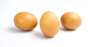 Τρία αυγά Στοκ Εικόνα