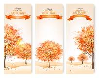 Τρία αφηρημένα εμβλήματα φθινοπώρου με τα ζωηρόχρωμα φύλλα και τα δέντρα Στοκ Εικόνα