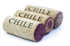 Το κρασί της Χιλής βουλώνει Στοκ Εικόνες
