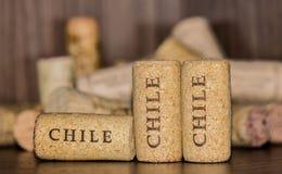 Τρία βουλώνουν των μπουκαλιών κρασιού της Χιλής Στοκ φωτογραφίες με δικαίωμα ελεύθερης χρήσης