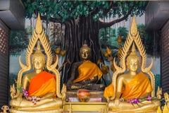 Τρία Βούδας κάθονται στον ταϊλανδικό ναό Στοκ Εικόνες