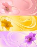 Τρία εμβλήματα με τα λουλούδια Απεικόνιση αποθεμάτων