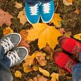 Τρία ζευγάρια των ποδιών Στοκ Εικόνα