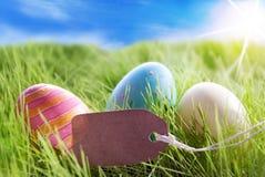 Τρία ζωηρόχρωμα αυγά Πάσχας στην ηλιόλουστη πράσινη χλόη με την ετικέτα με το διάστημα αντιγράφων στοκ φωτογραφίες με δικαίωμα ελεύθερης χρήσης