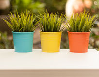 Τρία ζωηρόχρωμα flowerpots στον κήπο Στοκ εικόνες με δικαίωμα ελεύθερης χρήσης