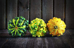 Τρία, ζωηρόχρωμος, κολοκύθες φθινοπώρου Στοκ Φωτογραφίες